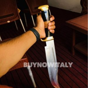 Custom Handmade D2 Stainless Steel Gorgeous Hunting Bowie Knife with Horn &Wood